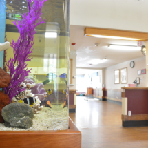 Benson Dayroom Fish Tank
